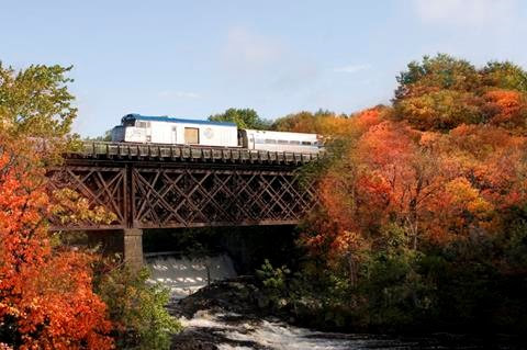 Fall Train