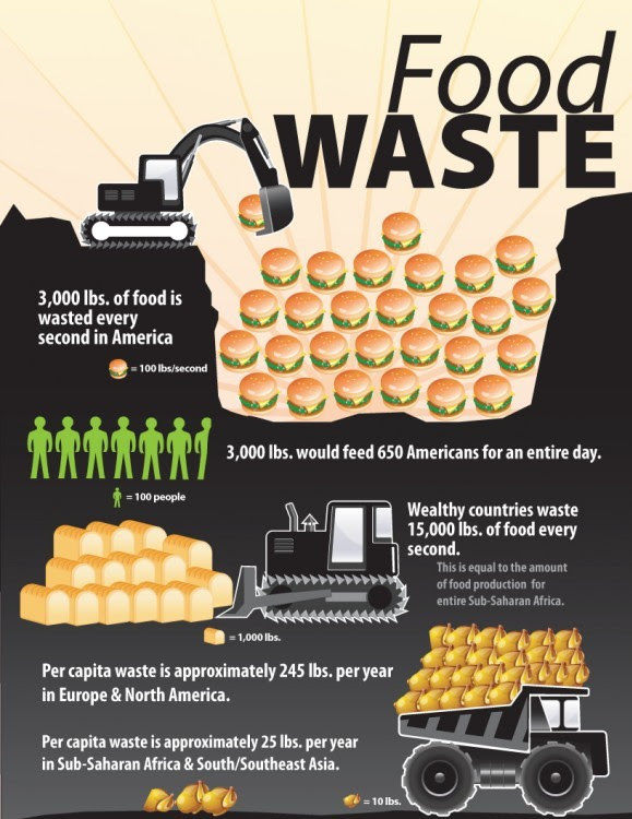 Infographic with facts and information on Food Waste