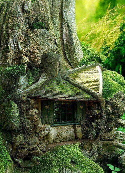 Сказочный домик на дереве.