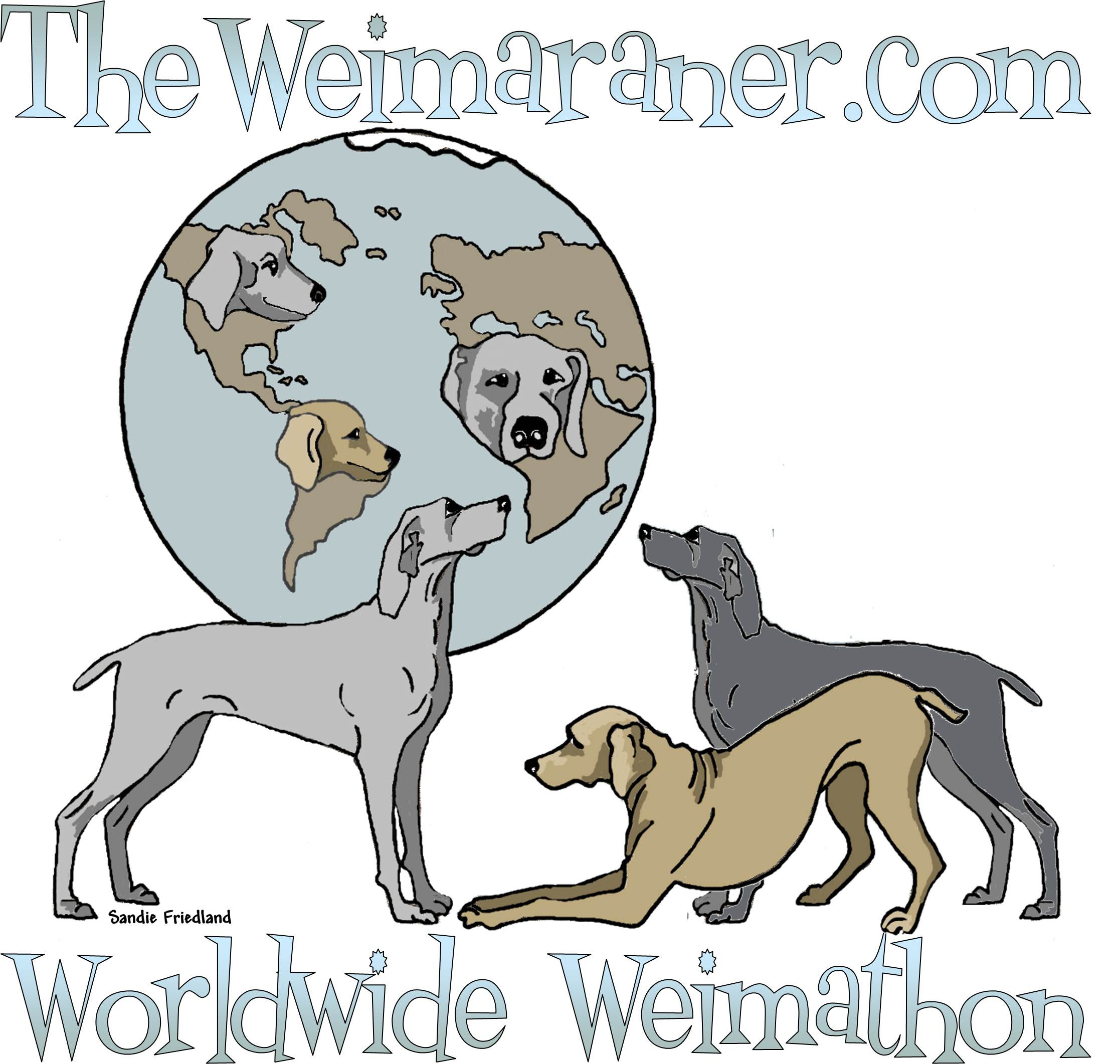 TheWeimaranerWeimathon1