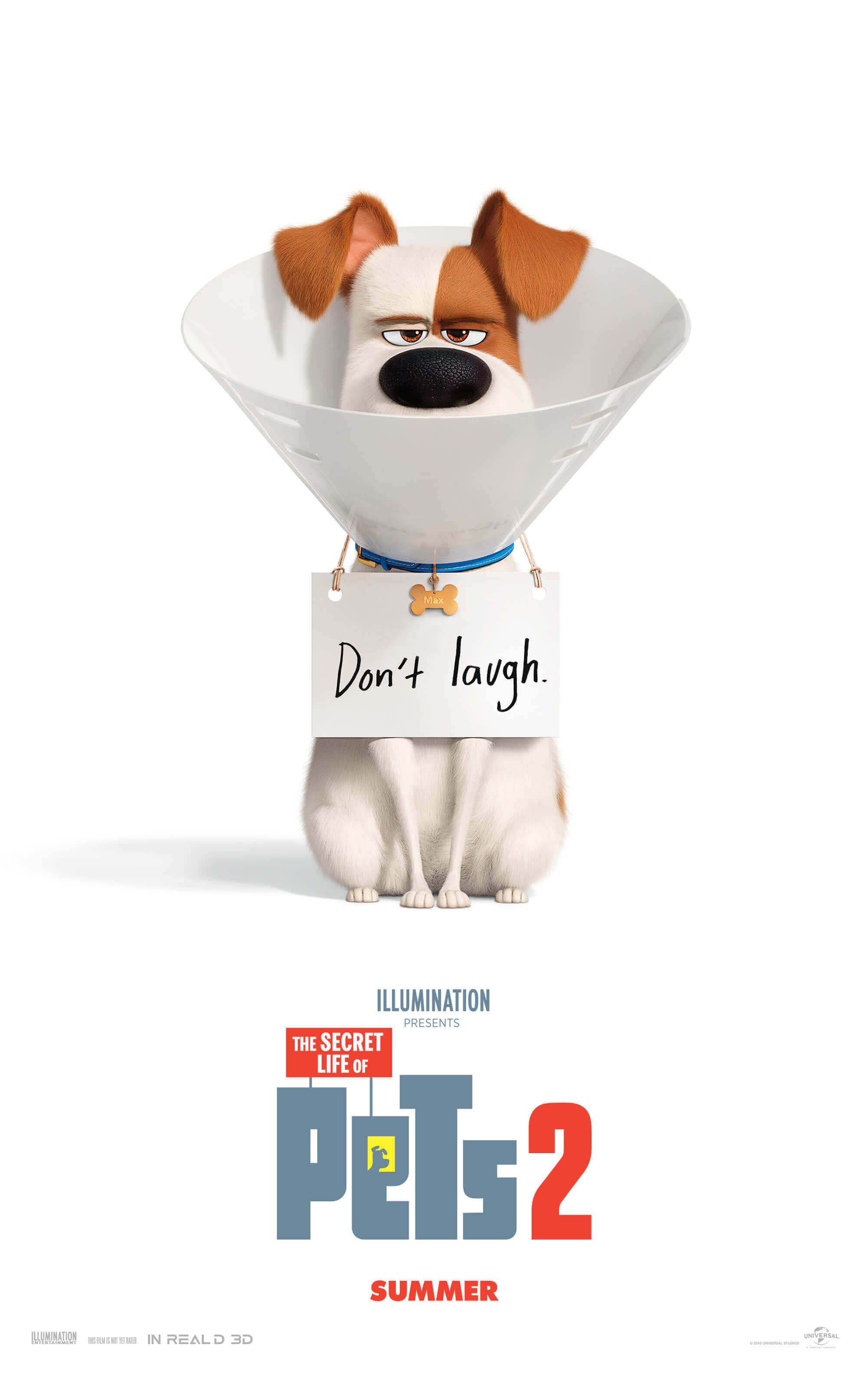 Image result for secret life of pets 2