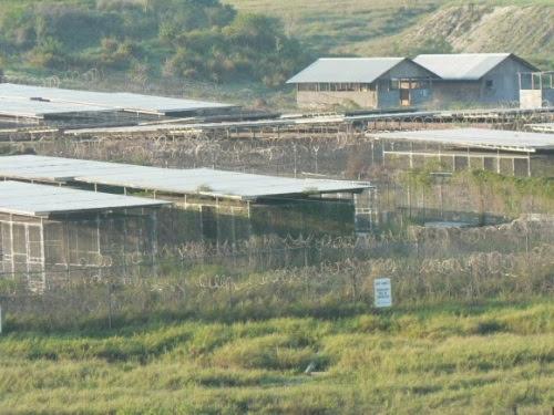 Campo Rayos X, una especie de campo de concentración, con jaulas a la interperie, donde llegaron los primeros detenidos de Guantánamo.