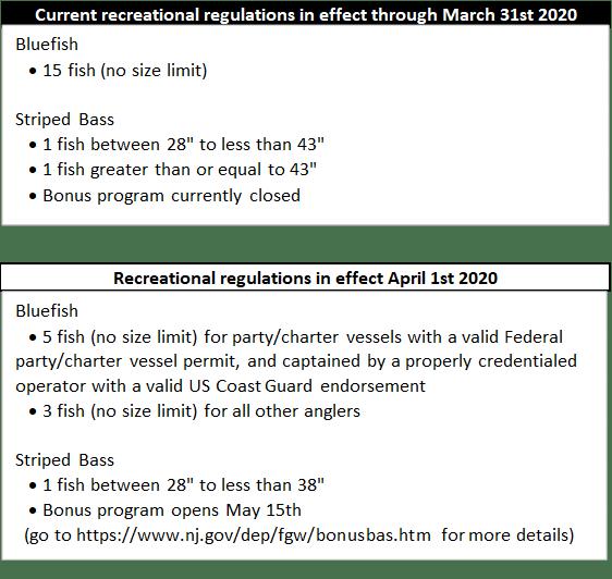 Striped Bass Regulations