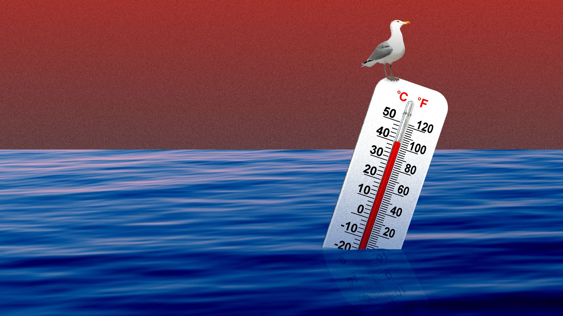 Illustration of thermometer floating in the ocean