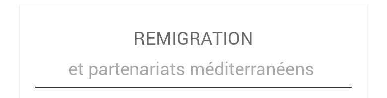 REMIGRATIONet partenariats méditerranéens