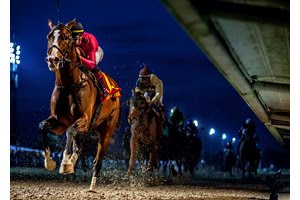 War of Will wins the Risen Star Stakes at Fair Grounds Race Course