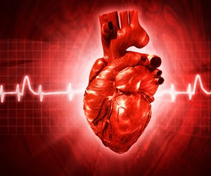 Obesity significantly increases risk of Type 2 diabetes and coronary artery disease
