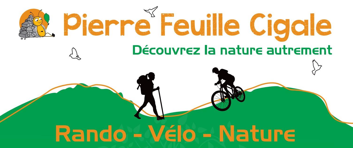 Pierre Feuille Cigale
