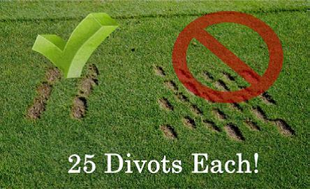 Preferred Divot Pattern