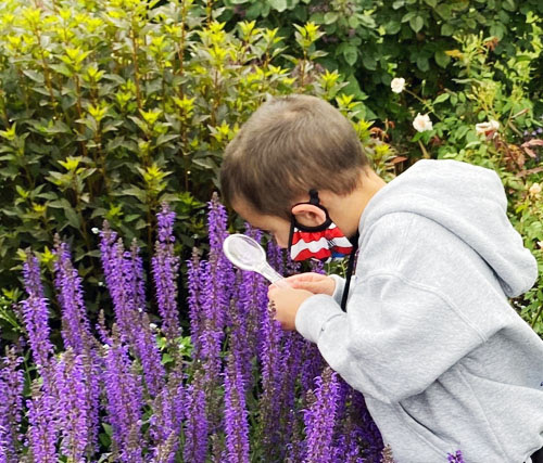 A young child looks at plants through a magnifier.