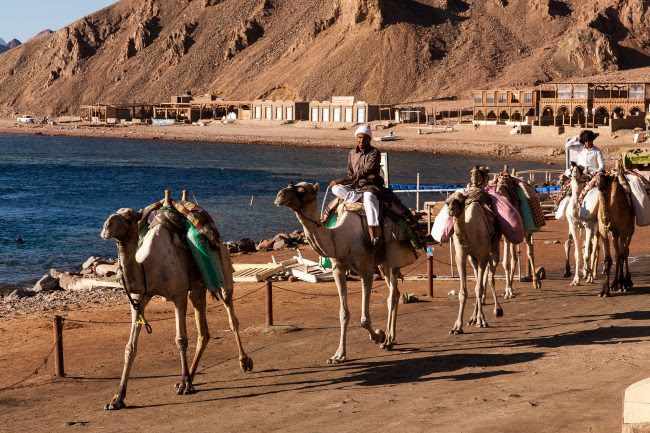 Mısır da Mutlaka Görülmesi gereken 20 Yer, piramitler, karnak tapınağı, tahrir meydanı, luksor, ebu simbel, el halil çarşısı, kaihre kulesi, sfenks, el hüseyin camisi, Sina dağı,