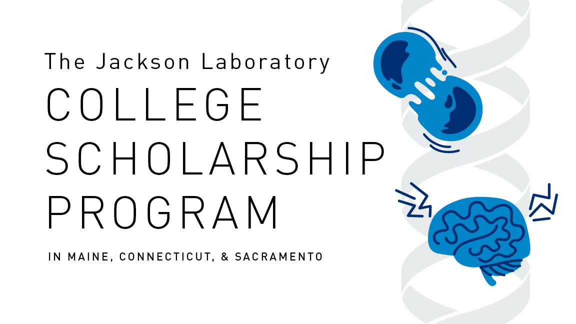 JAX Scholarship Header Image.jpg