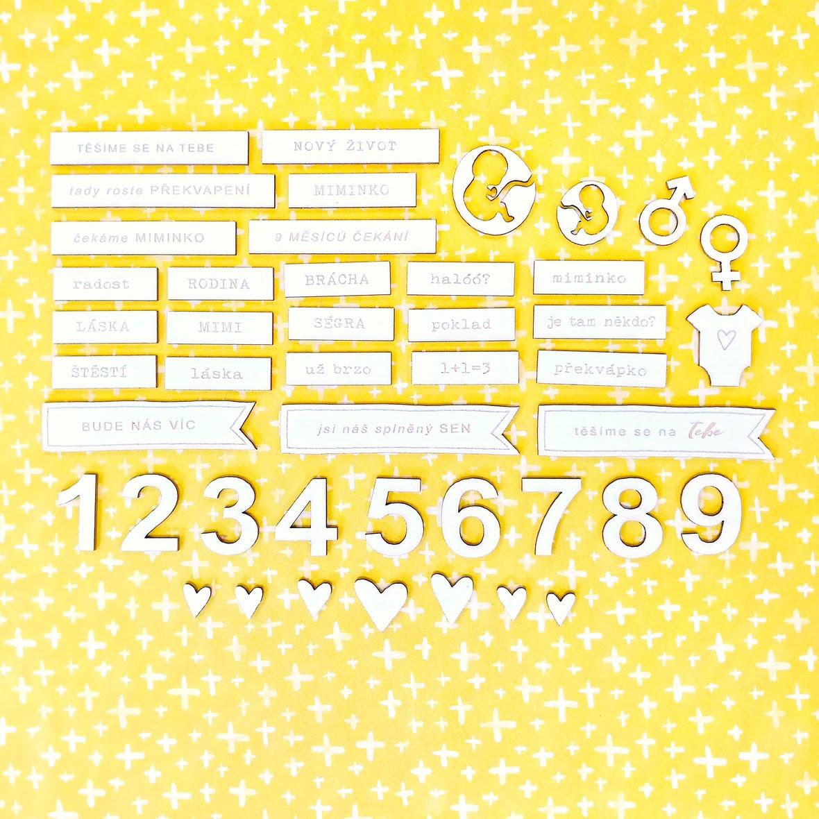 IMG 20170815 105016-01