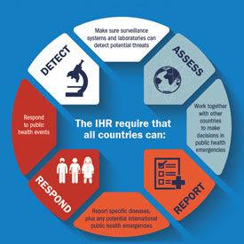 IHR Infographic