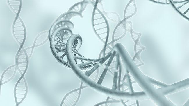 artistic rendering of DNA strands