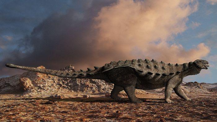 Un fossile comme pris dans la roche