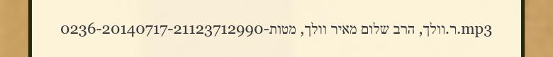 0236-20140717-21123712990-ר.וולך, הרב שלום מאיר וולך, מטות.mp3