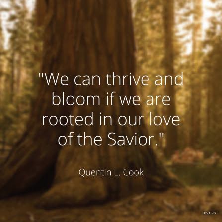 "An image of a tree trunk coupled with a quote by Elder Quentin L. Cook: ""We can thrive … if we are rooted in our love of the Savior."""
