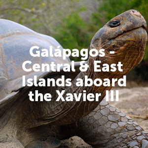 Galapagos - Central & East Islands