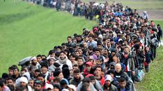 Migrants en France. Pas de RSA mais...