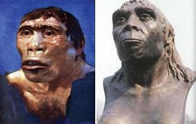 Homo erectus: Java man và Peking man
