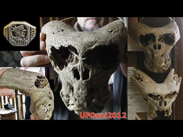 One Of The Strange And Annunaki Skulls Found Adygea, Russia  Sddefault