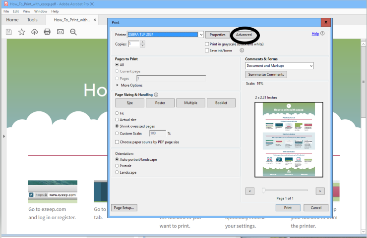 screenshot: advanced settings in the print dialog