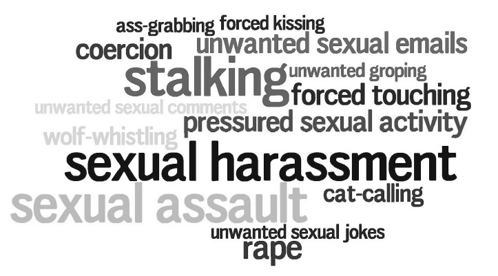 Image result for different forms of sexual assault
