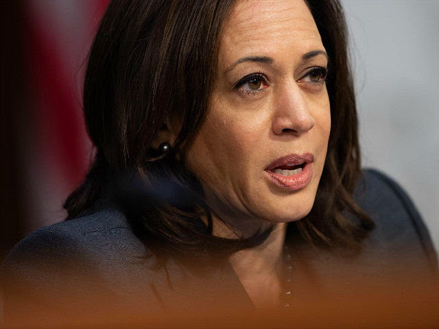 US Senator Kamala Harris, Democrat of California, asks witnesses about Worldwide Threats during a Senate Select Committee on Intelligence hearing on Capitol Hill in Washington, DC, January 29, 2019. (Photo by SAUL LOEB / AFP) (Photo credit should read SAUL LOEB/AFP/Getty Images)