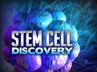 adult stem cells therapy for scllerosis