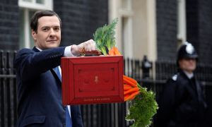 budget and carrots