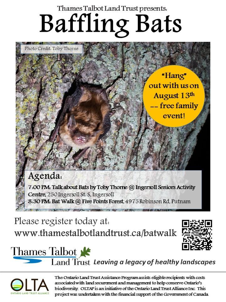 Bat_Event_Poster.jpg