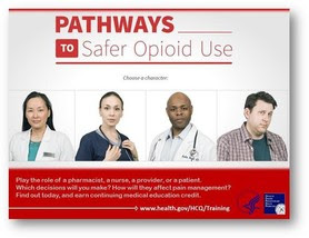 Pathways to Safe Opioid Use
