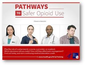 Pathways to Safe Opioid Use