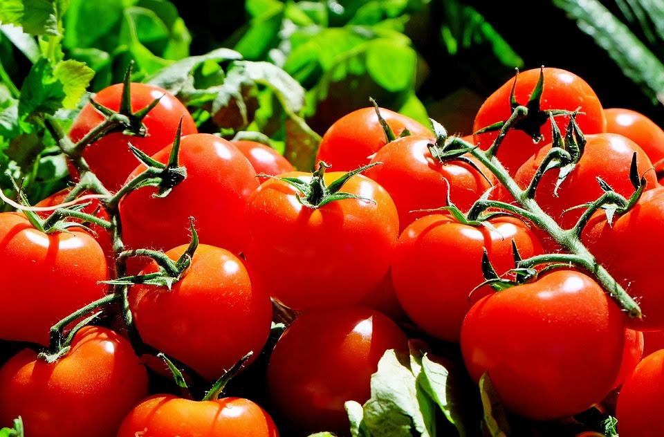 Tomate, Vermelho, Alimentos, Frisch, Mercado