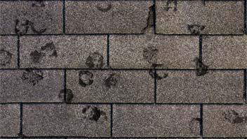 shingle damage hail