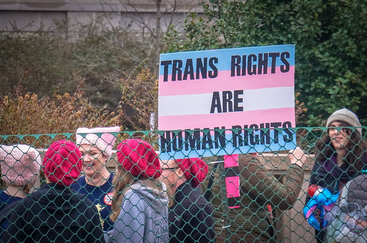 "Person holding a sign that reads ""Trans Rights Are Human Rights"" standing in a group of women wearing knitted hats."