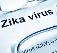 Paper with definition of Zika virus