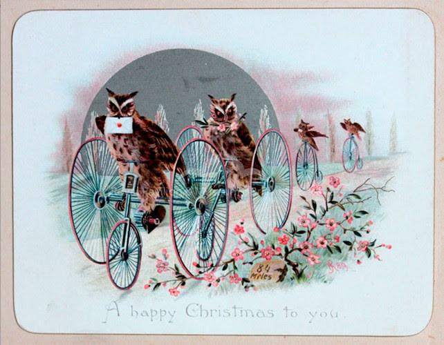 Bạn có muốn nhận thông điệp Giáng sinh đến từ những chú cú mèo của bóng đêm?