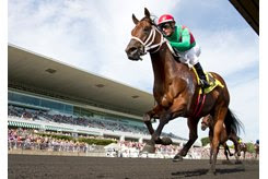 A horse crosses the wire at Arlington International Racecourse