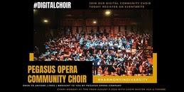 Pegasus Digital choir