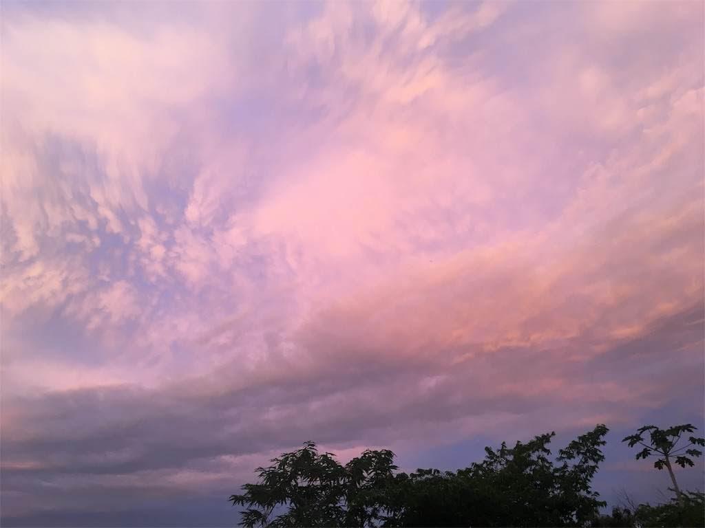 ピンク色に染まる空。朝焼け。