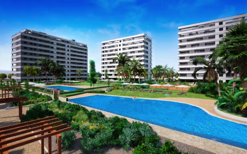Blegium Property Buyers In Spain
