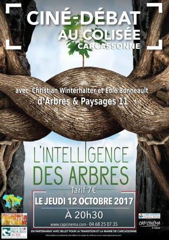Affiche projection débat L'intelligence des arbres au Colisée