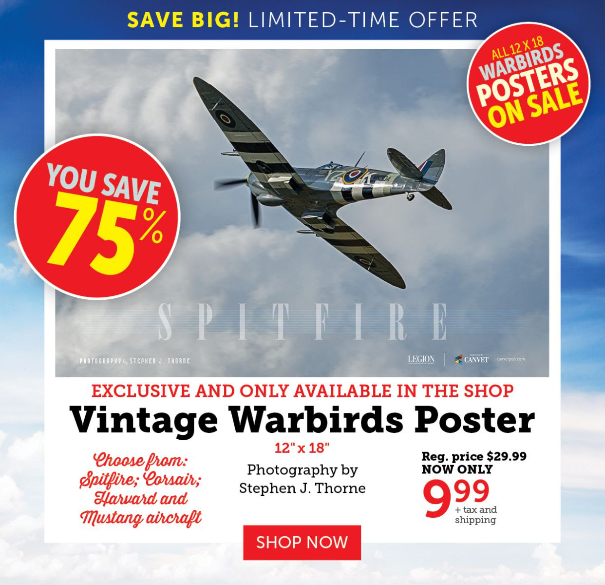 Warbirds Poster