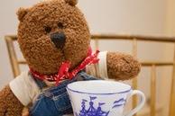 teddy-mullholand
