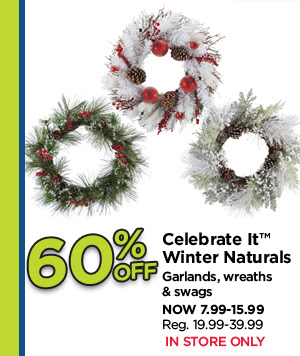60% Off Celebrate It Winter Naturals