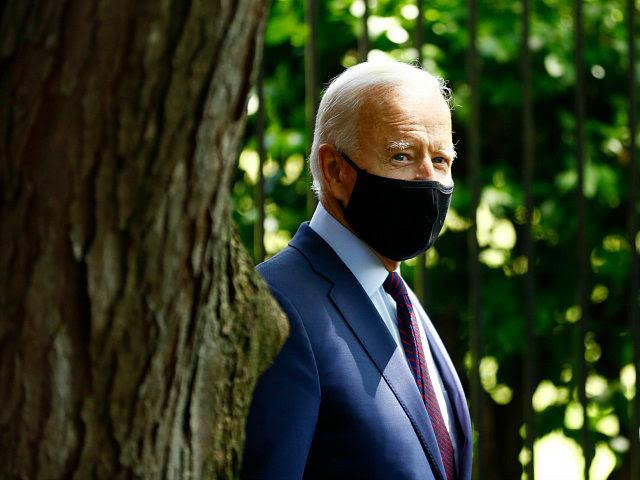 Joe Biden Walks Off When Questioned About FBI Seizing Son's Laptop Joe-biden-mask-behind-tree-june25-2020-ap-640x480