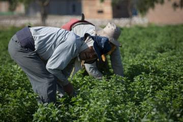 Asamblea Nacional Agraria del Bicentenario se realizará el 28 de julio