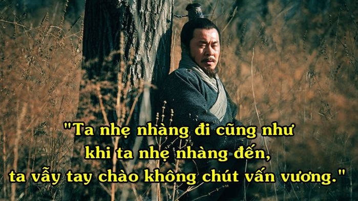 taothao 5